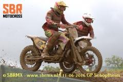 20160611GPSchopfheim021