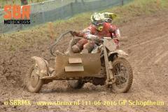 20160611GPSchopfheim035