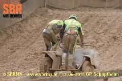 20160612GPSchopfheim010