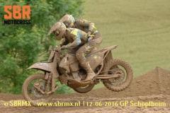 20160612GPSchopfheim038