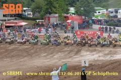 20160612GPSchopfheim073