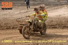 20160612GPSchopfheim135